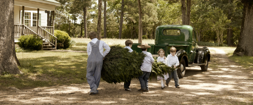 Ever-Thine-Home-Christmas_Tree_Kids