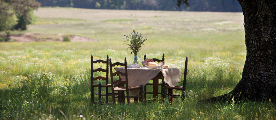 Table-in-field