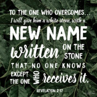 God's Nickname for You