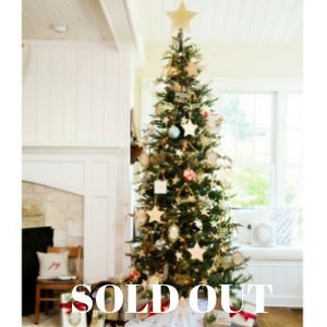 Full-Tree-Sold-out-300 (1)