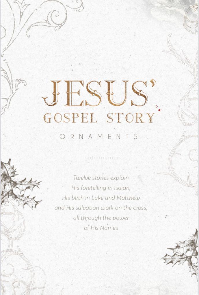 Gospel Story Booklet Image